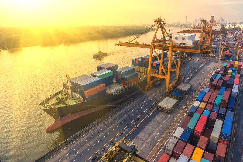 importadora importadoras importador importação importacao comercio exterior comercio internacional empresa de importação e exportação